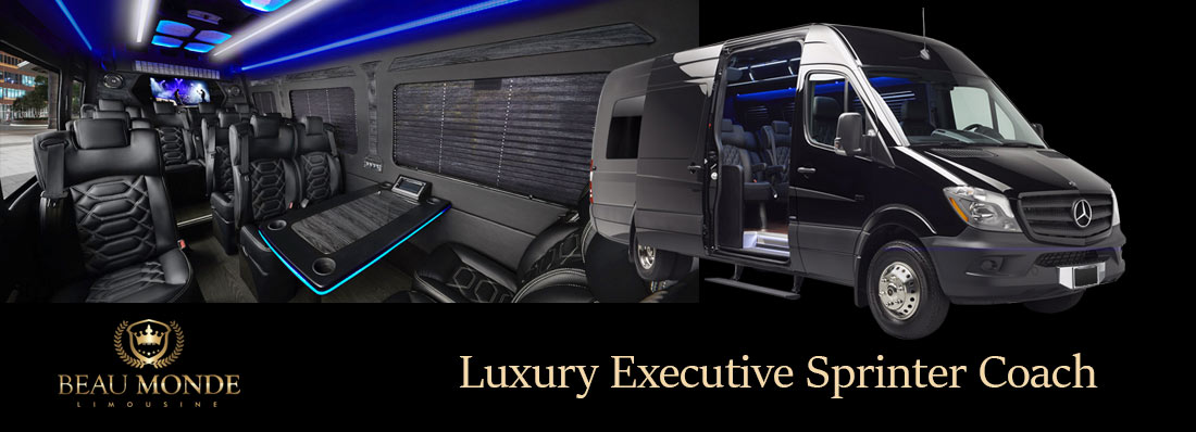 LUXURY EXECUTIVE SPRINTER COACH