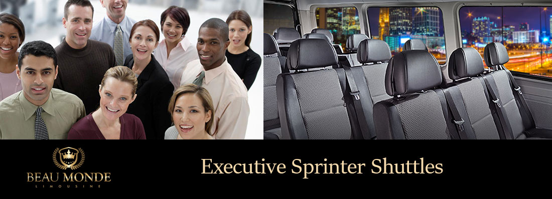 Private Sprinter Shuttle Services